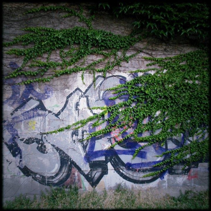 Giardini Di Plastica Genova.Giardini Di Plastica Circospetto Genova Da Un Altro Punto Di Vista