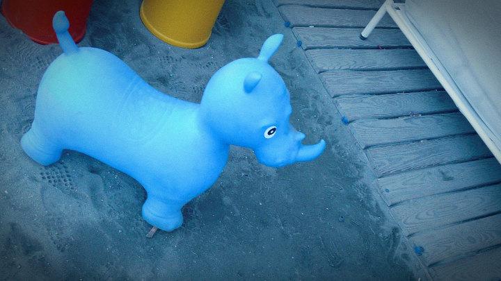 Rinoceronte azzurro