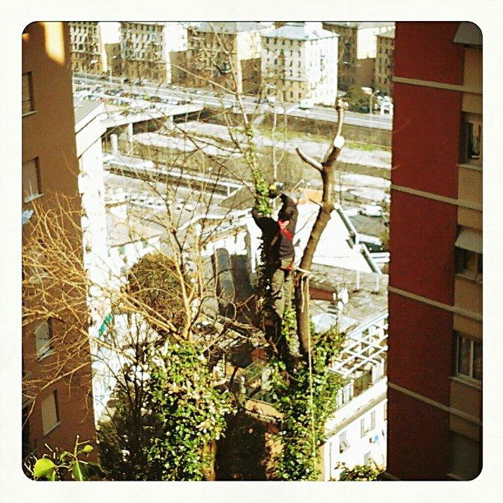 Bassa Val Bisagno, pulizie di primavera