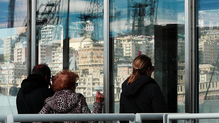 Sbirciare i cetacei al Porto Antico (gratis)