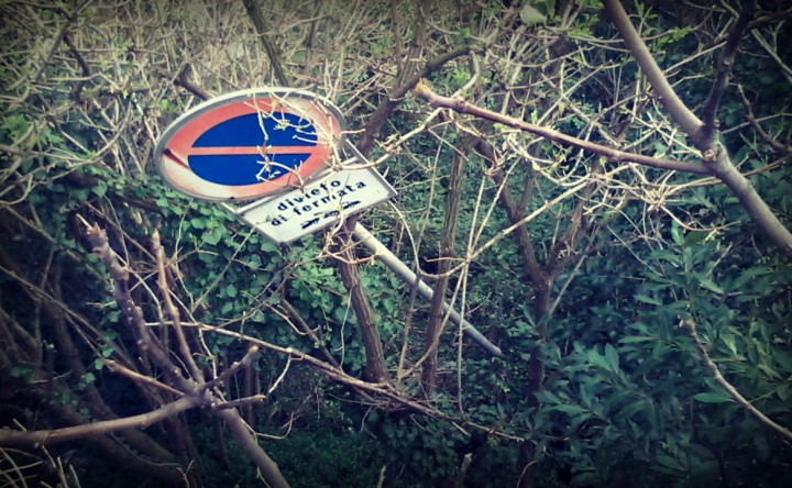 Val Bisagno, vietato fermarsi tra i rami